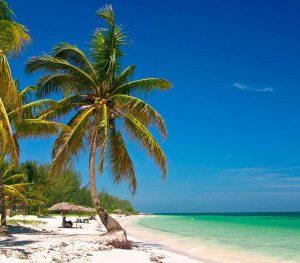 Playa caribeña de Cuba con palmeras